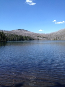 Mowitch Lake