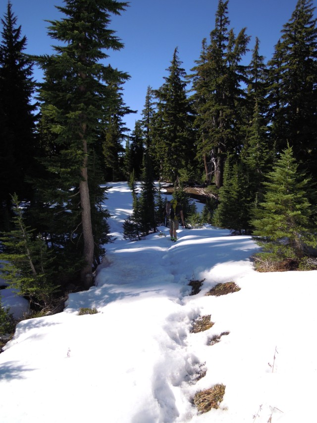 2 feet of snow on White Branch Trail about 1/4 mile from the PCT