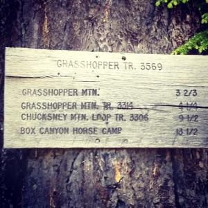 Grasshopper Trail via Hiyu Ridge